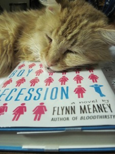The Cat Recession